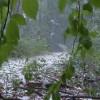Burze z gradem w Bydgoszczy i regionie [Ostrzeżenie meteorologiczne]