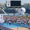 Już blisko 3000 uczestników na listach startowych 4. PKO Bydgoskiego Festiwalu Biegowego!