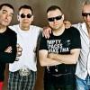 Kulturopis, koncert zespołu Kobranocka i wiele innych wydarzeń w MCK!