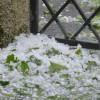Mogą wystąpić burze z silnym deszczem i gradem [Ostrzeżenie meteorologiczne]