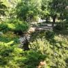 Park na Wzgórzu Dąbrowskiego zachęca do spacerów