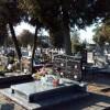 Sprawdź, organizację ruchu wokół cmentarzy w dniu Wszystkich Świętych