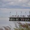 Synoptyk IMGW: Pogodny poniedziałek, może przelotnie popadać nad morzem;…