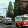 Zbliżają się obchody 130-lecia komunikacji miejskiej w Bydgoszczy