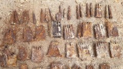 214 sztuk skorodowanej amunicji o kalibrach 7,92 mm znaleziono w regionie [FOTO]