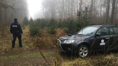 Bydgoska policja i Straż Leśna kontrolują prawidłowe zachowania zbieraczy zrzutów w lesie