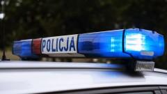 Policyjny pies pomógł w ustaleniu sprawców przestępstw