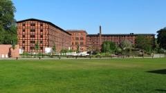 Ponad 7 mln złotych rocznie na utrzymanie zieleni w mieście