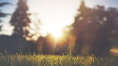 Synoptyk IMGW: W przyszłym tygodniu temperatury mogą osiągnąć nawet 27 st. C
