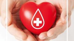 Gorące tematy - W sobotę przed Focusem będzie można oddać krew