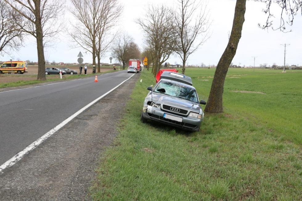 72-latek śmiertelnie potrącony przez kierowcę Audi
