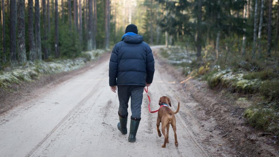 Ekspert: Powrót do normalnego życia najpóźniej w okresie jesienno-zimowym 2021 r.