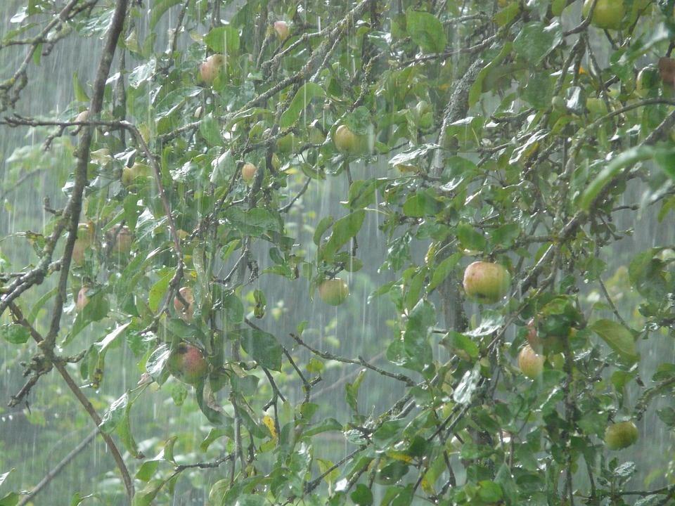 Intensywne opady deszczu z burzami