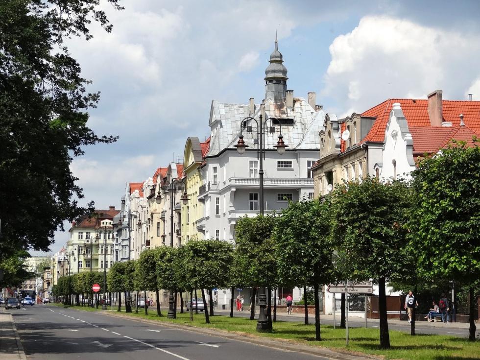Mieszkańcy Bydgoszczy mogą włączyć się do akcji sadzenia drzew