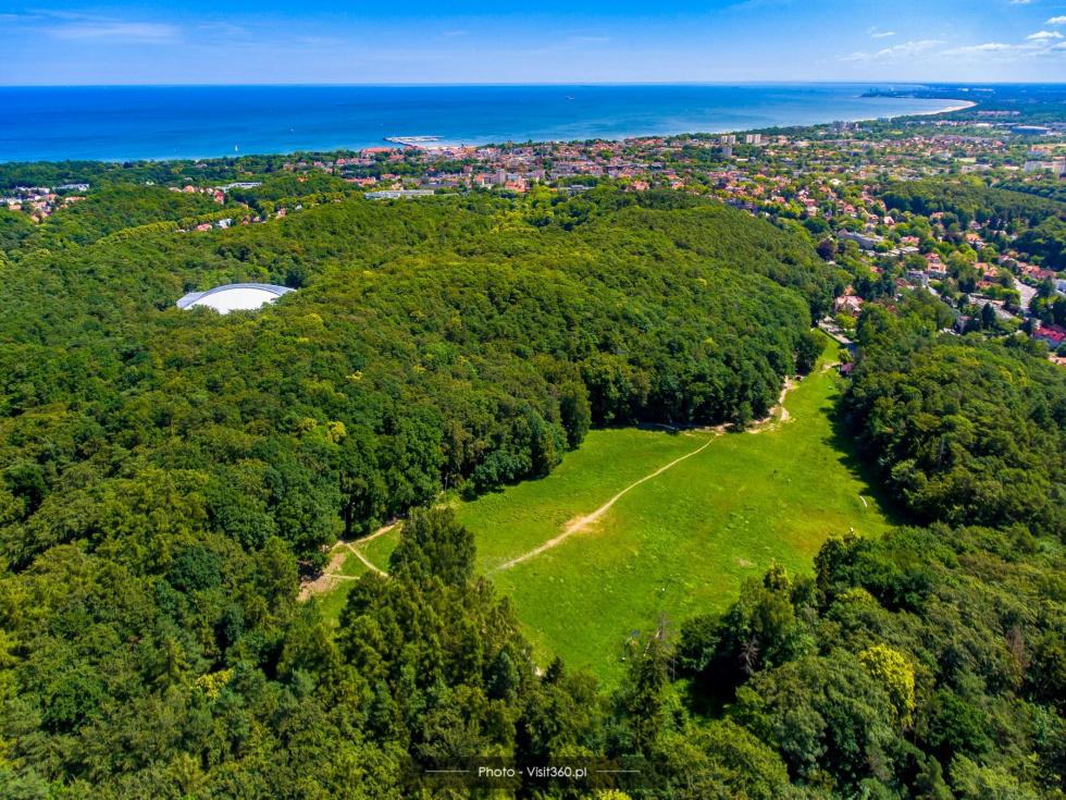 Najbardziej zielone polskie miasta. Bydgoszcz nie wypadła najlepiej