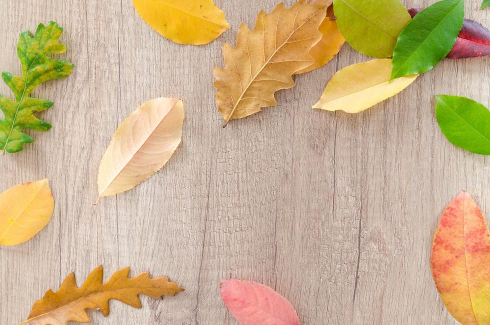 Okres jesienny – jak realizować swój wolny czas?
