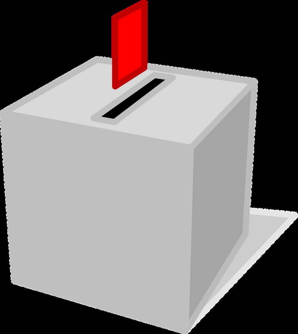 Szumowski zgłosił cztery poprawki do projektu w sprawie wyborów prezydenckich