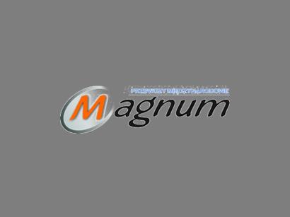 Przewozy międzynarodowe Magnum