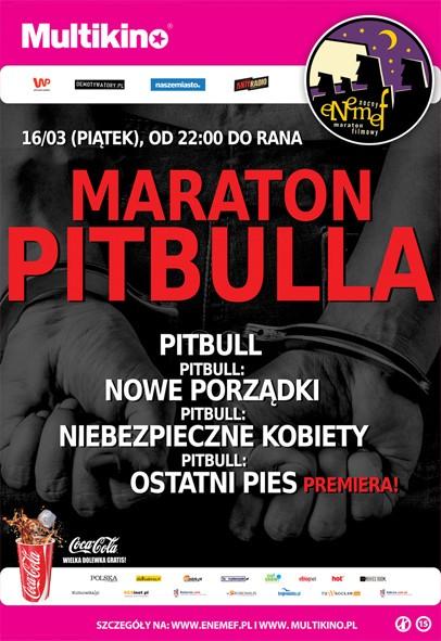 ENEMEF: Maraton Pitbulla. KONKURS