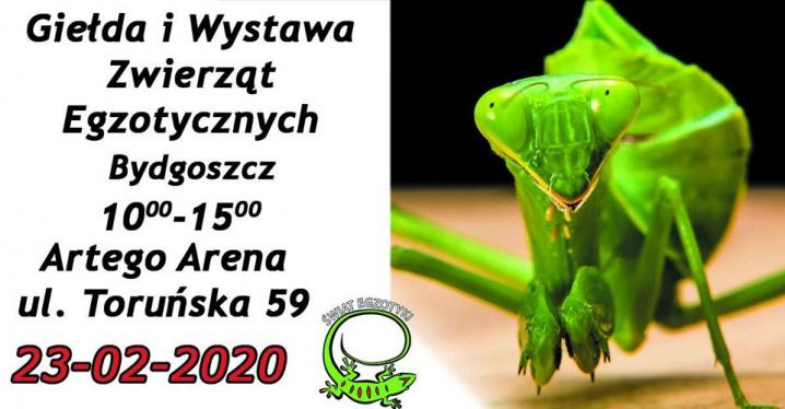 Giełda i Wystawa Zwierząt Egzotycznych w Bydgoszczy