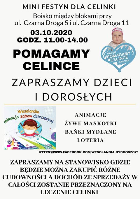 Mini Festyn Charytatywny Dla Celinki
