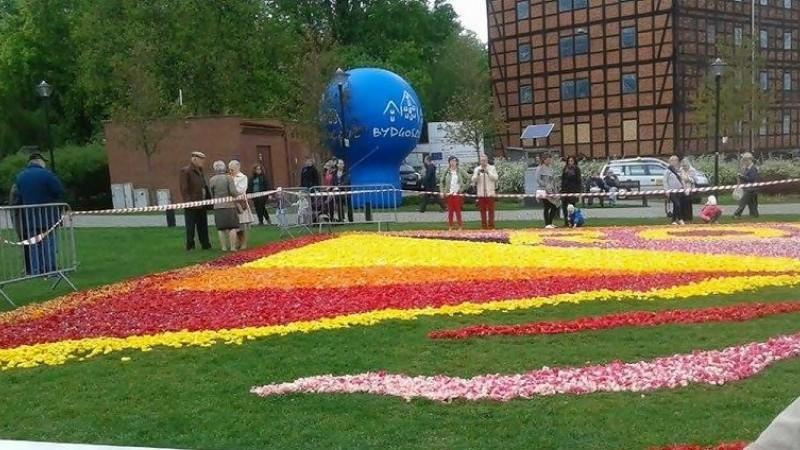 Rok Wisły Czyli Dywany Kwiatowe 2017 Bydgoski Portal
